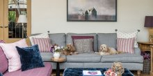 Quay View Interior Design Living room with two dogs on sofa